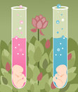 Test tube babies illustration of a boy and girl baby Royalty Free Stock Photos