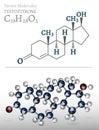 Testosterone Molecule Image