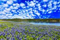 Texas Hill Country Royalty Free Stock Photo