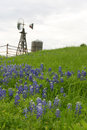 Texas windmill on hillside with bluebonnets