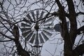 Texas windmill through the trees Royalty Free Stock Photo