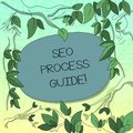 Text sign showing Seo Process Guide. Conceptual photo set actions improve online visibility website in engines Tree
