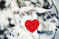 Textile heart hanged on a snow covered forest bush Stock Image
