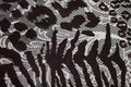 Textiles leopard background texture gray Stock Photos