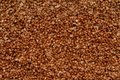 Texture background is out of boiled buckwheat a Royalty Free Stock Photography