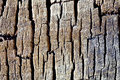 Texture background of wood and cracks Royalty Free Stock Photo
