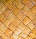 Texture of bark tree birch, closeup. Royalty Free Stock Photo
