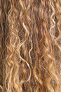 Texture of blond hair Royalty Free Stock Photos