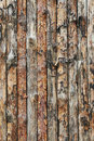 Texture boards pinewood sawn wood slats Royalty Free Stock Photos
