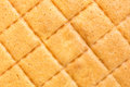 Texture of butter cake close up background Stock Photography