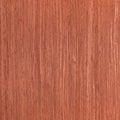 Texture of cherry, wood veneer Royalty Free Stock Photo