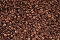 Texture of coffee beans brown background Stock Images