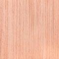 Texture de chêne série en bois de texture Images libres de droits