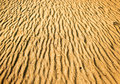Texture of desert yellow sand in Stock Photo