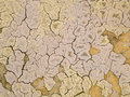Texture of dried mud Royalty Free Stock Images