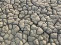 Texture of dry mud near muddy volcano Royalty Free Stock Photo