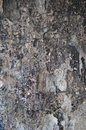 Texture fire damage of a damadged wall Royalty Free Stock Photo