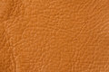 Texture of genuine leather close-up, cowhide. For natural, artisan backgrounds, backdrop, substrate composition use Royalty Free Stock Photo