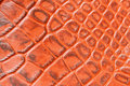 Texture of genuine leather close-up,embossed under the skin crocodile. For modern pattern, wallpaper or banner design