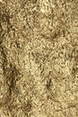Texture golden wall Royalty Free Stock Photography