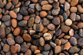 Texture of Gravel . Royalty Free Stock Photos