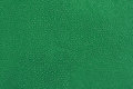 Texture of green leather Royalty Free Stock Photo