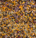Texture of herbal tea with flowers and berries Stock Images