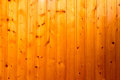 The texture of light wood in the sun Royalty Free Stock Photo