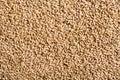 Texture of malt pilsner Royalty Free Stock Photo