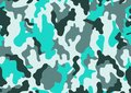 Texture military camouflage repeats seamless army green hunting. Camouflage pattern background. Classic clothing style masking cam