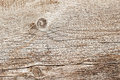 Texture of natural old weathered wooden board with crack lines, curves, swirls. Close-up. Vintage background Royalty Free Stock Photo