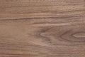 Texture oak veneer Royalty Free Stock Photo