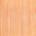 Texture oak wood texture series natural rural tree background Stock Image