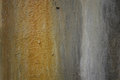 Texture of old shabby rusty surface wall Royalty Free Stock Photo
