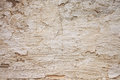 Texture of old wall dirty cracked closeup Stock Images