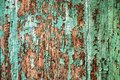 Texture of old wood with cracked paint of green color Royalty Free Stock Photo