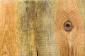 Texture pine wood plank high detailed of Royalty Free Stock Photography