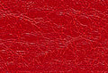 Texture of red leather Royalty Free Stock Photo