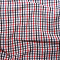 Texture of a red and white checkered picnic blanket. Stock Image