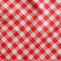 Texture of a red and white checkered picnic blanket. Royalty Free Stock Photo