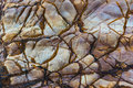 Texture of rock gives made of nature artist Royalty Free Stock Photo