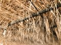 Texture from sagging dry yellow orange natural beautiful withered diverse rustic old dehydrated texture roof made of grass, straw, Royalty Free Stock Photo
