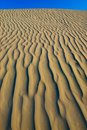 Texture in a sand dune Stock Photos