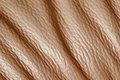 Texture skin brown of old Royalty Free Stock Photos