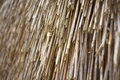 Texture. straw roof Royalty Free Stock Photo