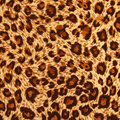 Texture of tiger fabric can be used as background Stock Images