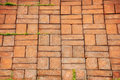 Texture of walkway brick Stock Image