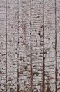 The texture of weathered wooden wall. Aged wooden plank fence of vertical flat board