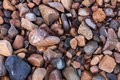 Texture of wet shiny small sea stones Royalty Free Stock Photo