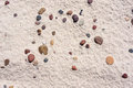 Texture of white sand with pebbles on baltic beach inclusion small Stock Image